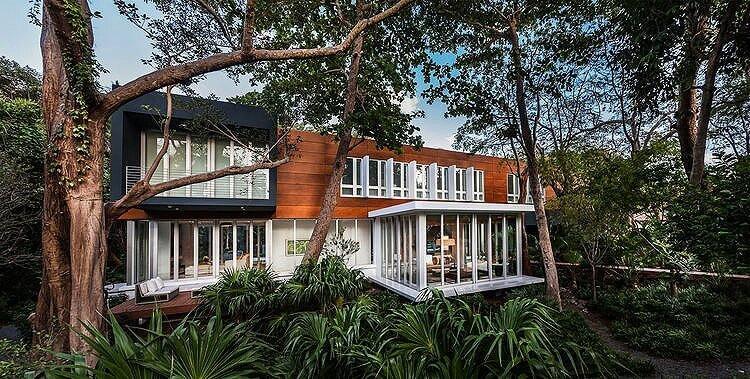 Jungle Landscape Design in Coral Gables, Florida