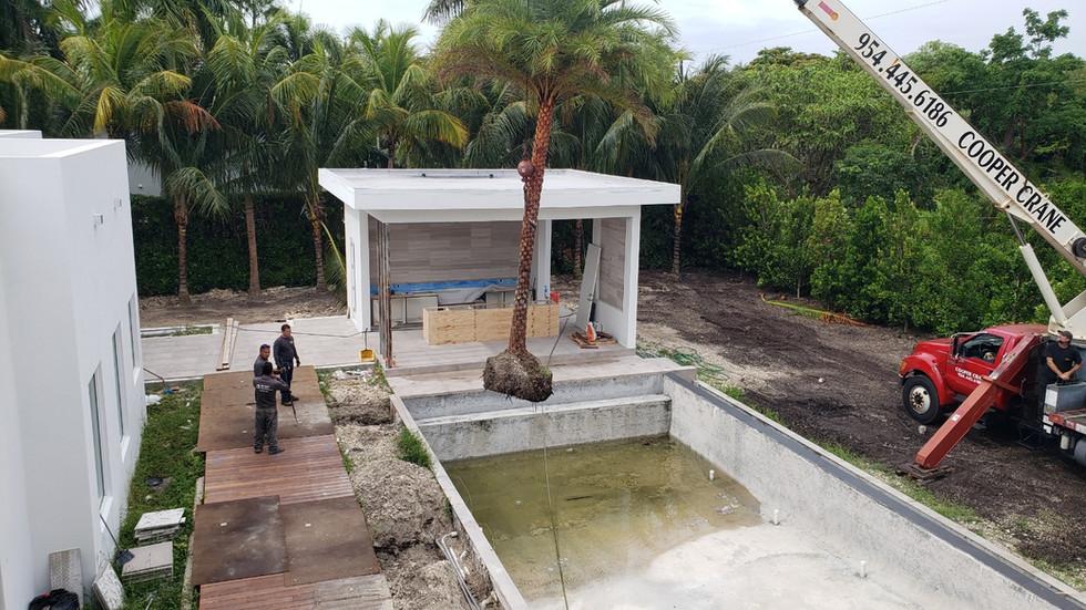 Pinecrest Miami Landscape Design Project