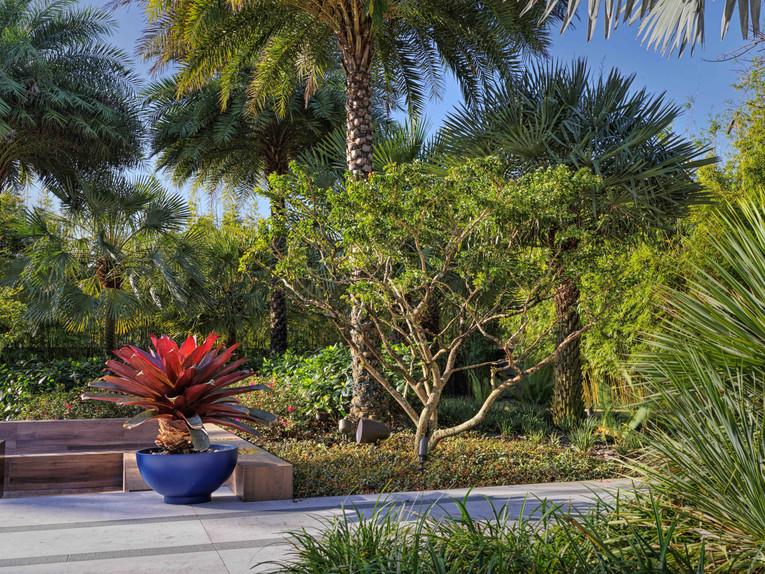 Landscape Architecture Pool Area