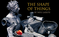 The Shape of Things (Cracked Stone with