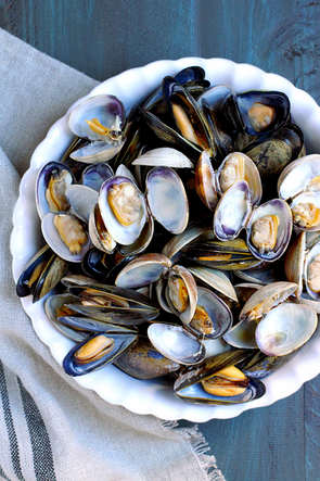 Clams-and-Mussels.png