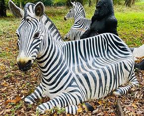 Zebra Seat.jpg