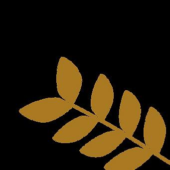 Brown Leaf One-01.png