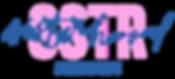 logo_sster.png