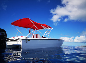Speed Boat Charter in St Maarten