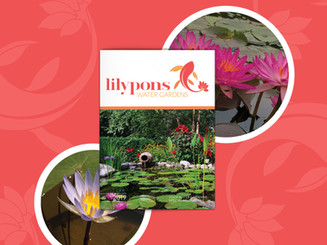 Lilypons Water Gardens