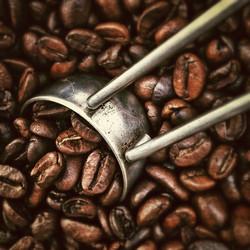 beans-caffeine-coffee-2065