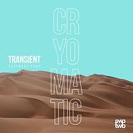 Transient album cover art