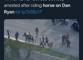 """Chicago """"Census Cowboy"""" arrested for riding horse on highway to fight against """"gun violence"""""""