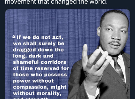 Whoops! Moms Demand Action uses MLK for their agenda (did they forget about his guns?)