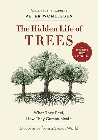 the hidden life of trees.jpg