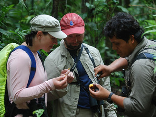 Rainforest Expeditions Regenera