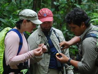 Rainforest Expeditions Regenera