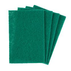 Hectoserve Green Scourers