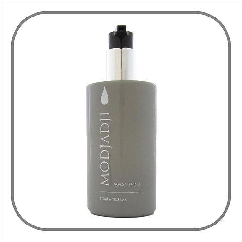 Modjadji Grey Shampoo 310ml x 12