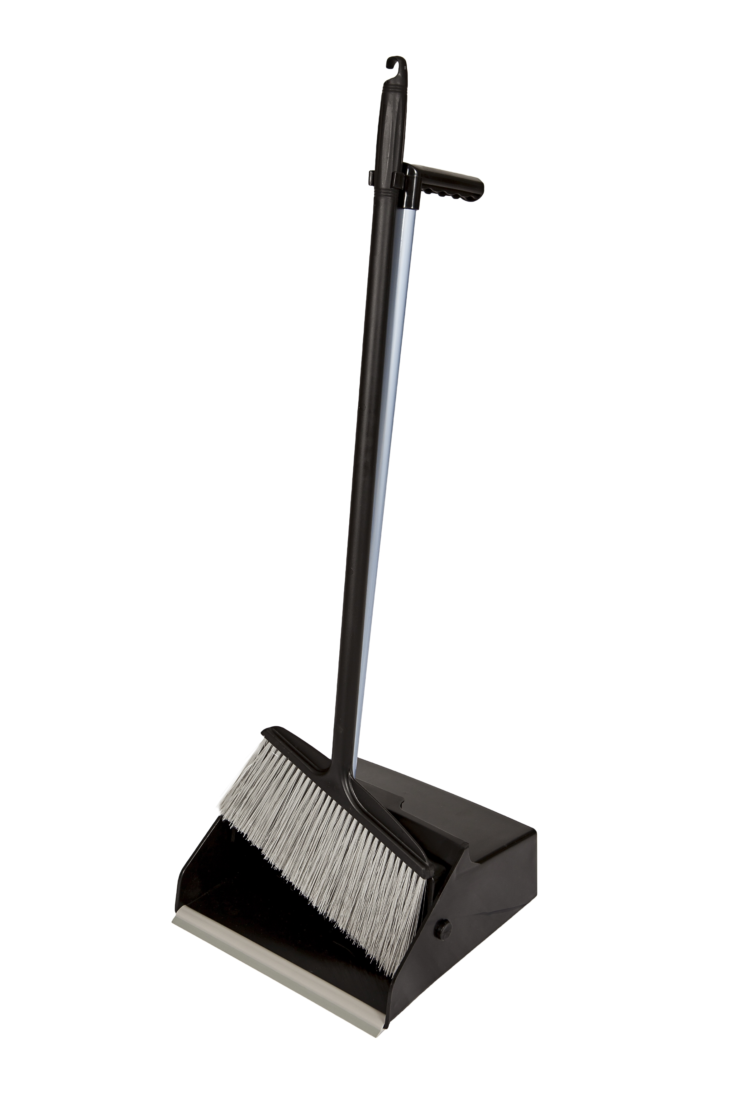 Long Handled Scoop and Broom