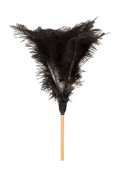 Hectoserve Feather Duster