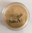Solaris Gold Coin 2.jpeg