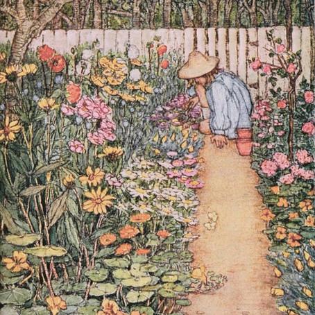 Easy plants to grow to start a medicinal garden