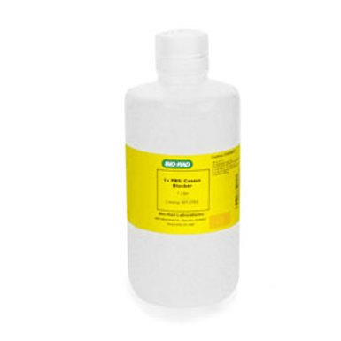 Tampão 10X Phosphate Buffered Saline with 1% caseine