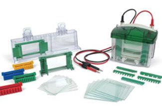 Sistema completo eletroforese vertical, Mini Protean tetra Cell  1,0 mm  1-2 gel
