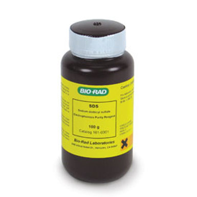 SDS (Sodium Dodecyl Sulfate)
