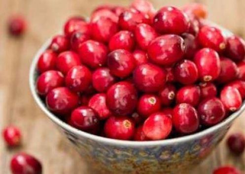 pote cheio com fruta fresca de cranberry