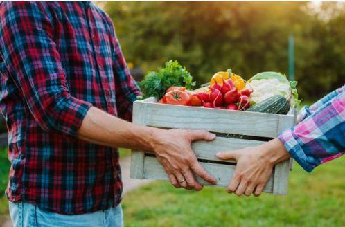 um homem entregando ao outo uma caixa com frutas, verduras e legumes frescos