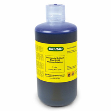 Coomassie Brilliant Blue R-250 Staining Solutions Kit