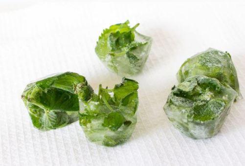 cubos de gelo com salsinha