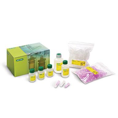 Aurum Plasmid Mini Kit