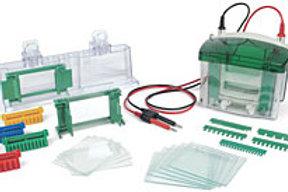 Sistema completo eletroforese vertical, Mini Protean tetra Cell  0,75mm 1-4 gel