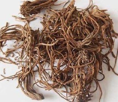 raízes de valeriana