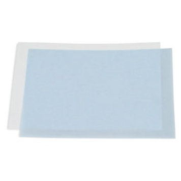Immun-Blot® PVDF Membrane, Precut, 0,2um 7 x 8.4 cm
