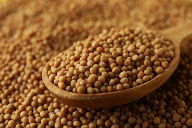 colher de pau com semente de mostarda