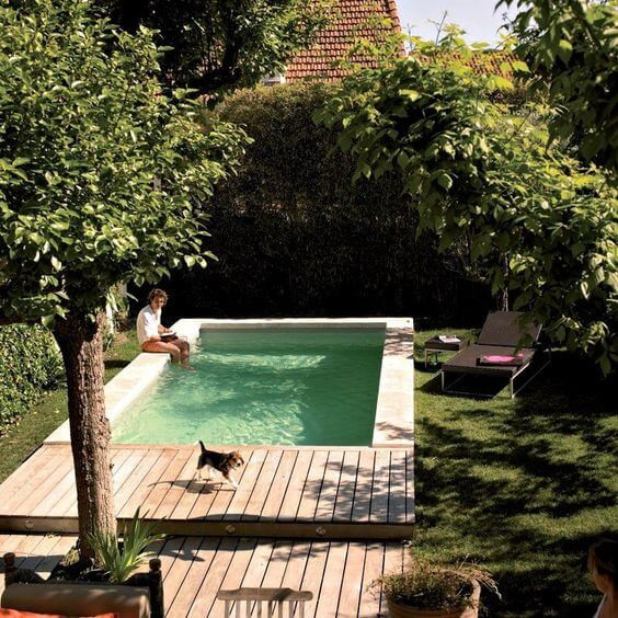 A photo of a backyard. A timber deck is in the foreground with some green trees. Attached to the deck is a large outdoor pool. It is surrounded by white pavers and filled with turqoise water. A man in a white shirt and board shorts sits on the edge of the pool with his feet in the water. There is green grass either side of the pool and deck area and a back fence made from shrubbery. A black and tan beagle walks across the deck