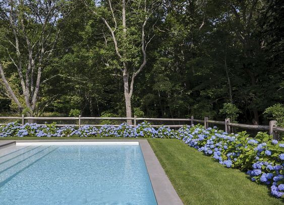 A photo of a backyard. A large fibreglass pool sits on the left. It is rectangular, filled with clear blue water and surrounded by grey tiles. A manicured green lawn surrounds with pool with blue flowers panted along the fence line, which is a simple wooden post and rail fence. Native trees sit beyond the fence