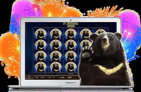 Formosa-Bear570x370.png
