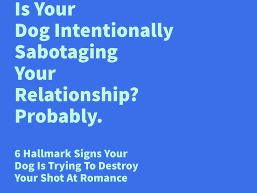 Is your dog trying to intentionally sabotage your relationship?