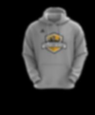 SAU - store hoodie.png