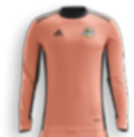 SAU - strip goalkeeper jersey.png