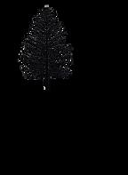 LOGO BHC Black.png