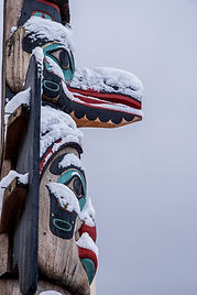 DSC_0371 chief in snow.jpg