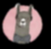 Llama pic _clipped_rev_1.png