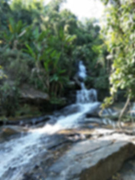 Lost waterfall in the jungle