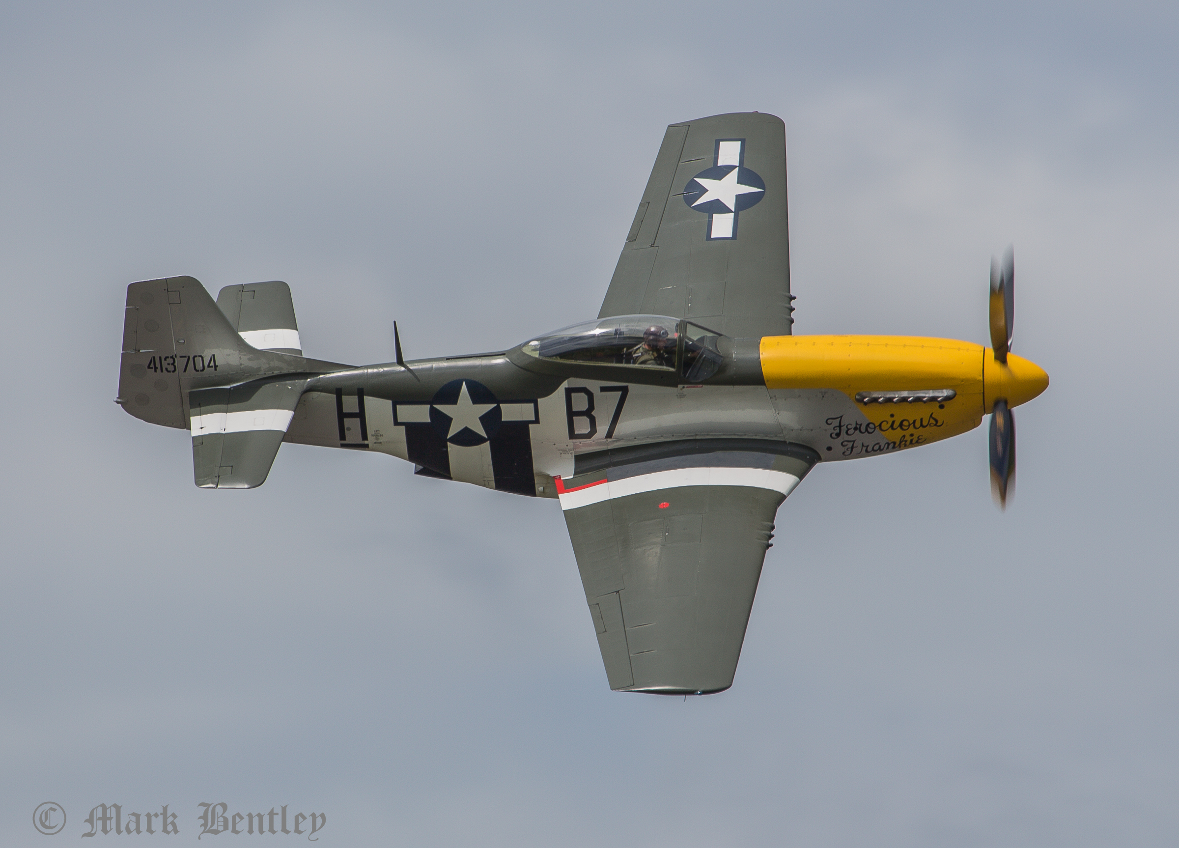 C009 P-51D Mustang