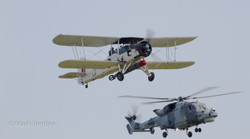 B007 Fairy Swordfish and Wildcat