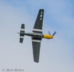 C007 P-51D Mustang