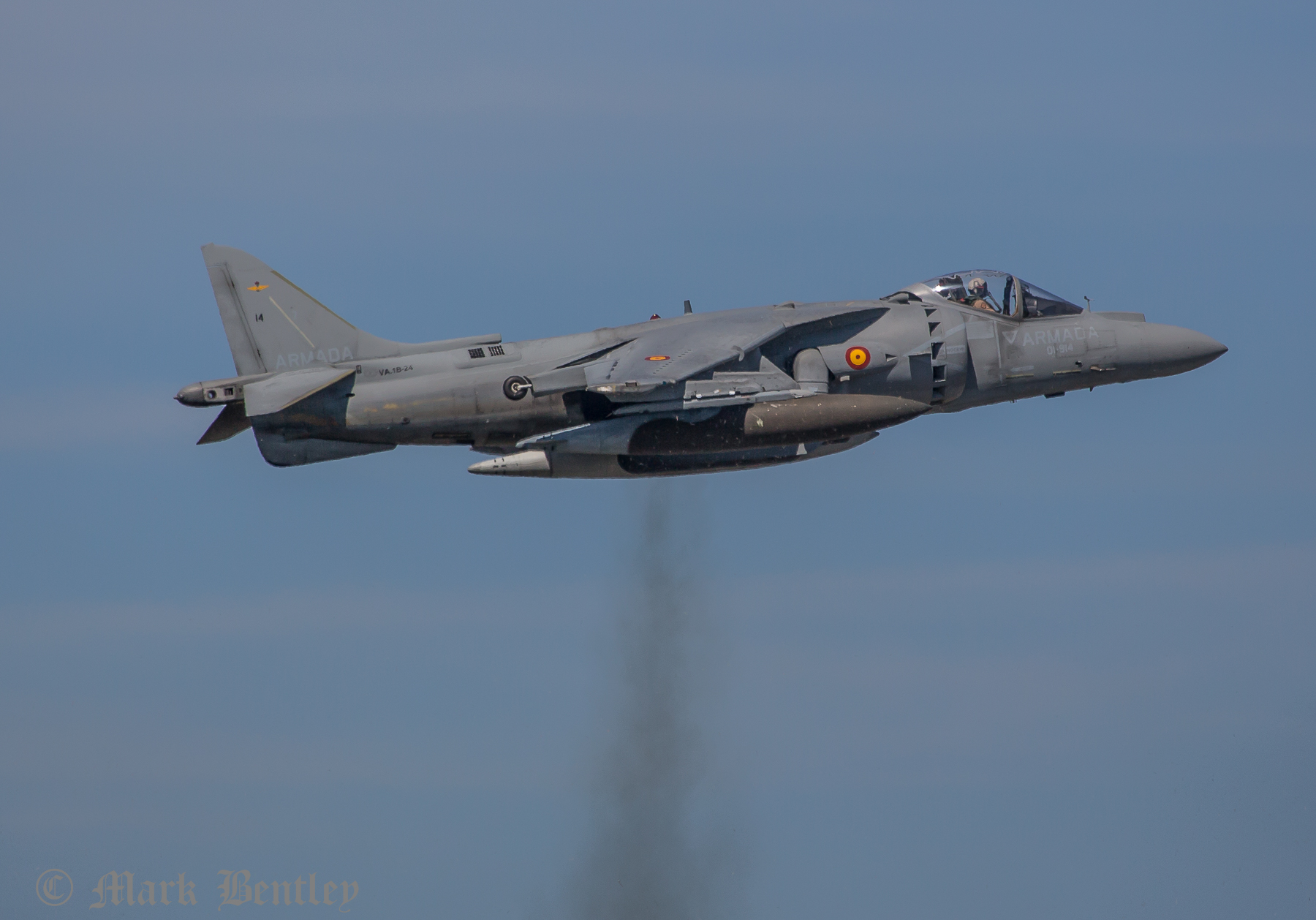 A039 Spanish Sea Harrier