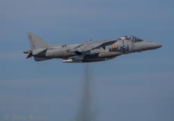 A039 Spanish Sea Harrier